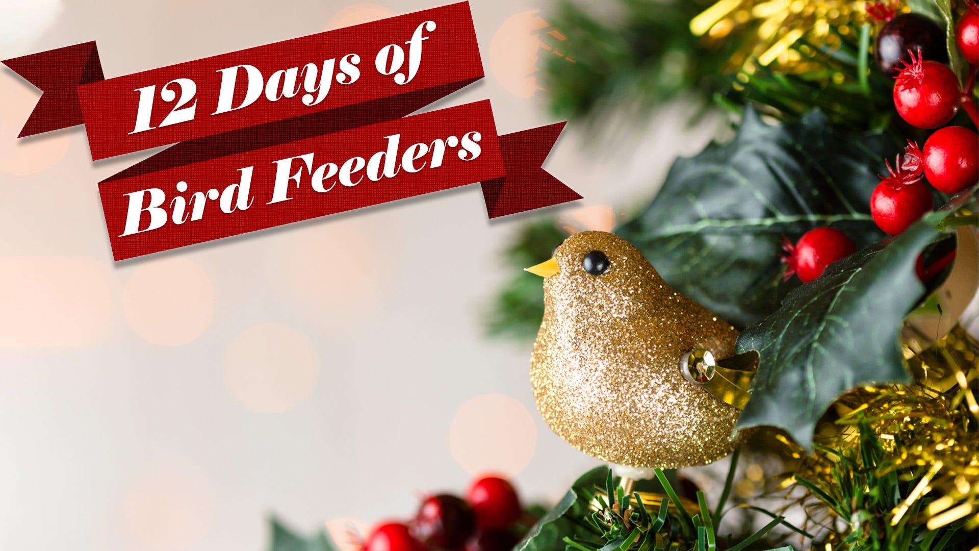 12 Days of Bird Feeders