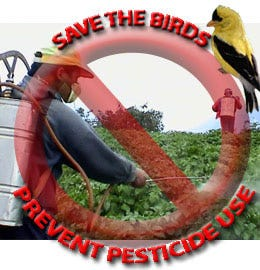 Save the birds and prevent harmful pesticide use