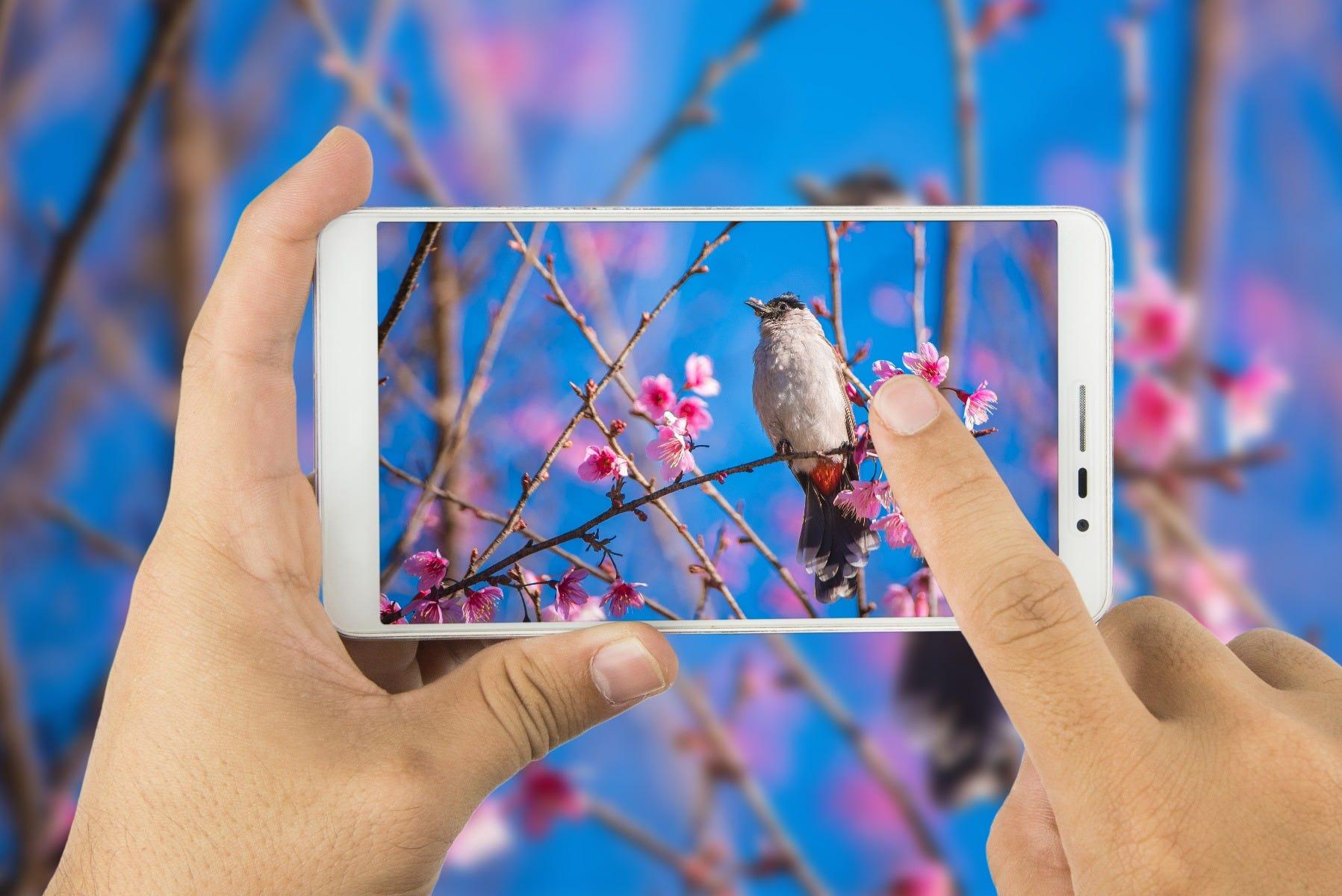 smartphone lense