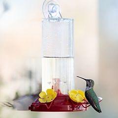 Perky-Pet® Plastic Window-Mount Hummingbird Feeder