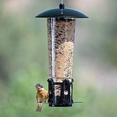 Perky-Pet® Squirrel-Be-Gone® Max Bird Feeder