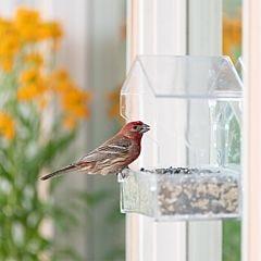 Perky-Pet® Window Bird Feeder - 1 lb Seed Capacity
