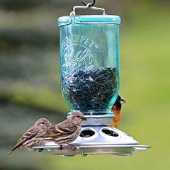 Perky-Pet® Mason Jar Wild Bird Feeder