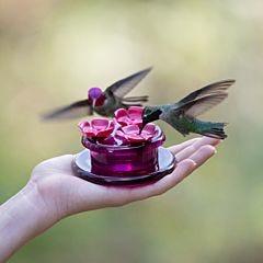 Perky-Pet® Handheld & Tabletop Hummingbird Feeder