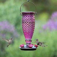 Perky-Pet® Diamond Wine Top-Fill Glass Hummingbird Feeder