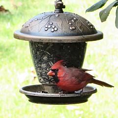 Perky-Pet® Holly Berry Gilded Chalet Wild Bird Feeder