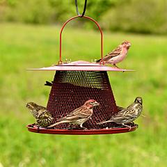 Perky-Pet® Red Cardinal Wild Bird Feeder