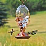 Perky-Pet®  Looking Glass Hummingbird Feeder