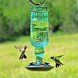 Perky-Pet® Green Antique Bottle Hummingbird Feeder