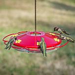 Perky-Pet® Oasis Hummingbird Feeder